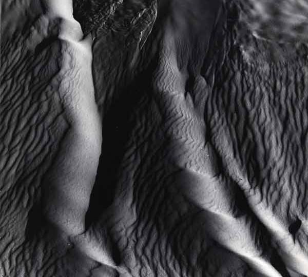 Brett Weston: Nudes and Dunes, Michael Hoppen Gallery