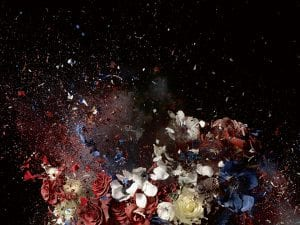 Ori Gersht, Blow Up 04, 2007. © Ori Gersht. Courtesy of Ben Brown Fine Arts.