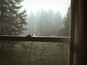Eric Ogden, <i>Fog (Mom's House),</i> 2011.